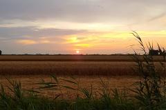 Polder Zuidland